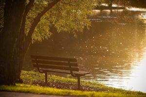 scenic lake at plymouth mi parks
