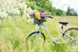 biking plymouth mi parks